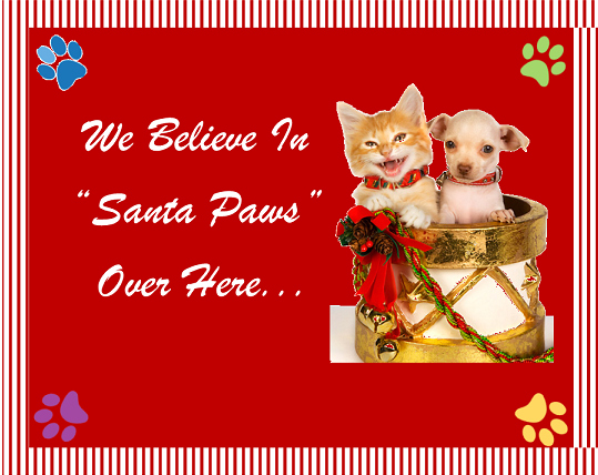 we-believe-in-santa-paws